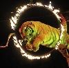 Цирки в Переволоцком